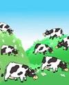 33 коровы песня текст: